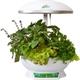 Роботы для растений
